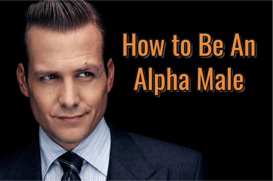 Alpha Male Featured